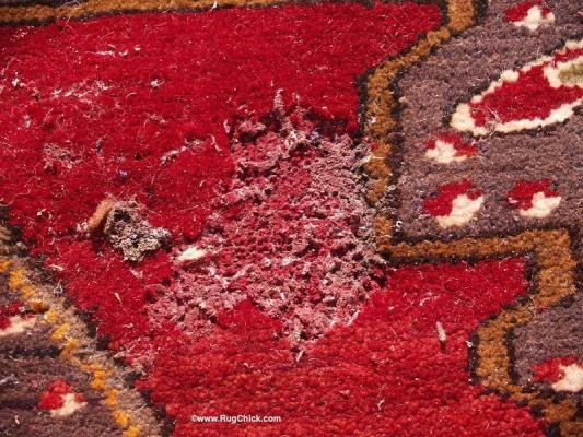 oriental carpet damage